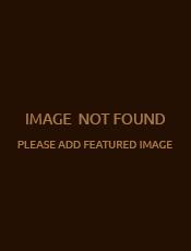 """Інструктивно-методичний онлайн-семінар для вихователів-методистів ЗДО Вінницької ТГ """"Показовий день Тижня безпеки дитини """"Безпека в соціумі:сучасні загрози"""""""